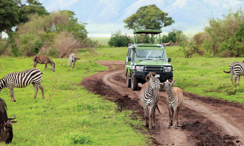 Tanzanie, entre nature et culture